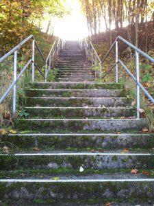 Climb up Get back
